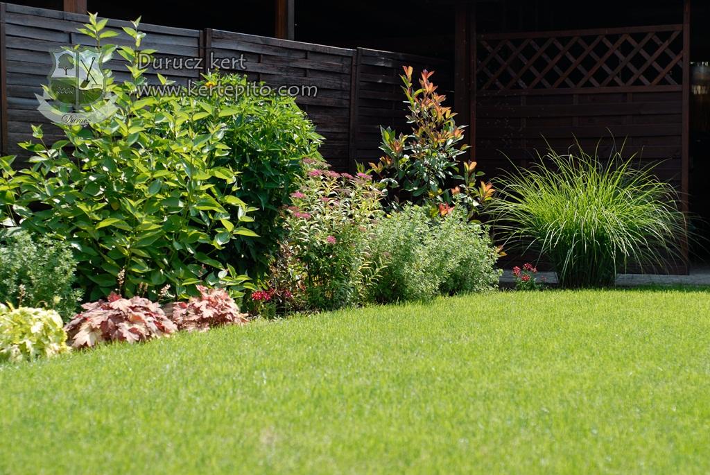 Read more about the article A gyepszőnyeg karbantartása – mire figyeljen oda, hogy zöld legyen a kertje?