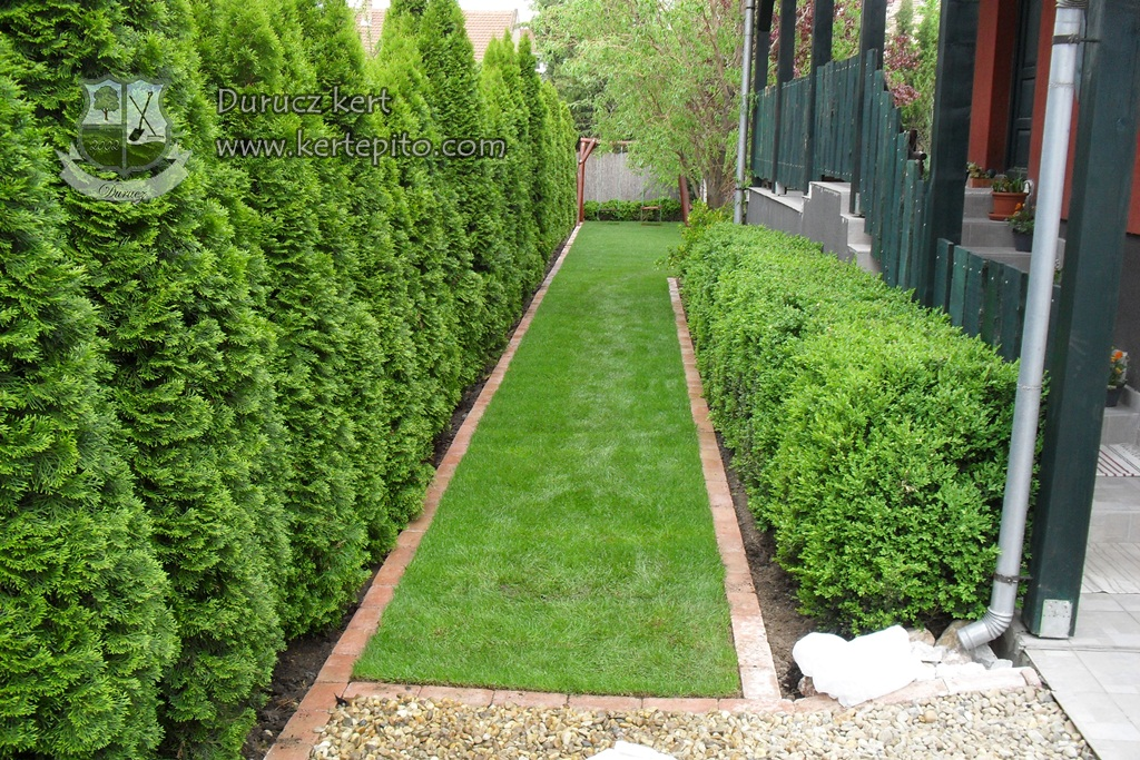 Read more about the article Hogyan alakítsa ki a kertjét, milyen stílus most a trendi?
