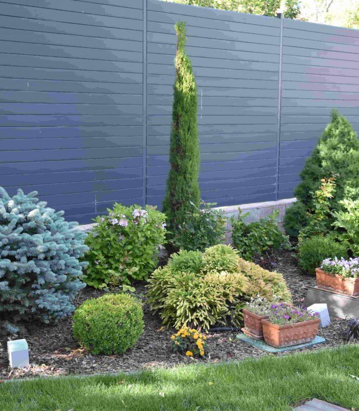 növény-ültetés-kerítés-mellé